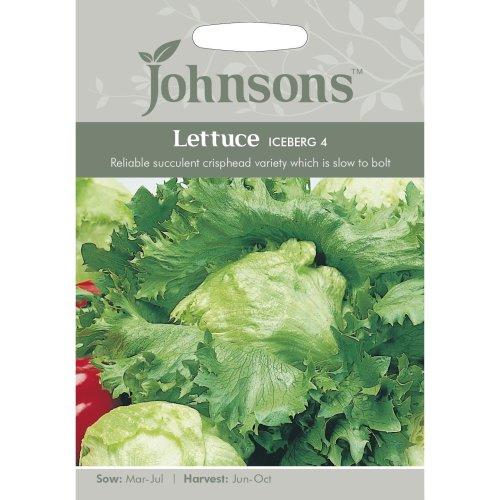 Johnsons Seeds - Pictorial Pack - Vegetable - Lettuce Iceberg 4 - 1500 Seeds