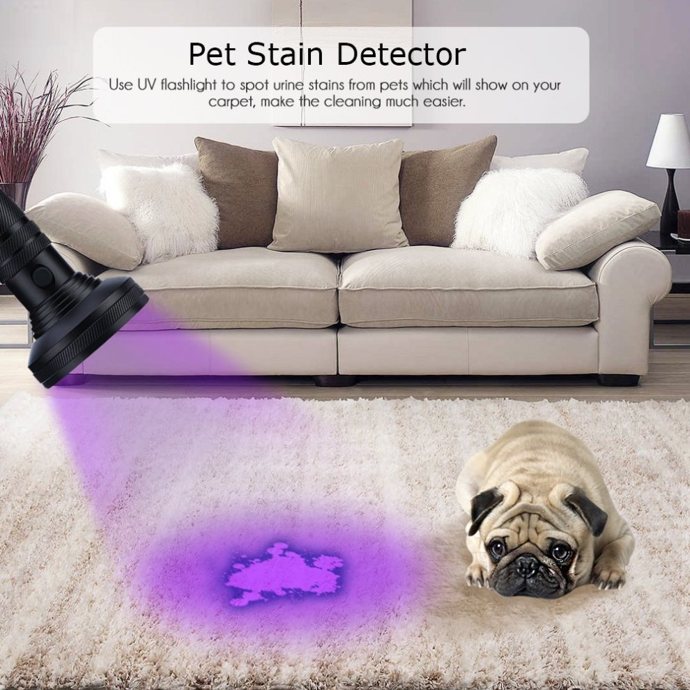 18637754e8 ... UV Flashlight Pet Stain Urine Detector Bright 100 LEDs Blacklight Torch  with UV Sunglasses for Dog ...