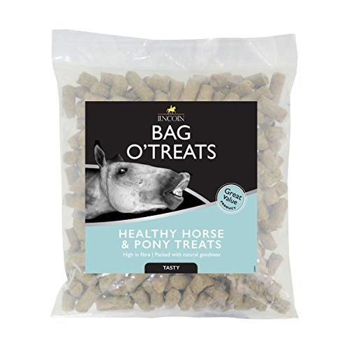 Lincoln Bag O�' Treats