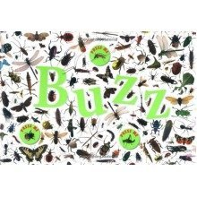 Buzz (dk Science)