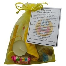 Stress Survival Kit Gift  - Great mini novelty gift to cheer up a stresses friend or loved one