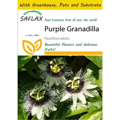 Saflax Potting Set - Purple Granadilla - Passiflora Edulis - 40 Seeds - with Mini Greenhouse, Potting Substrate and 2 Pots