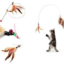 Funny Kitten Teaser Colours Feather Bell Play Length Interactive Toy Cat Wand Beads US