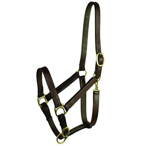 GATSBY LEATHER COMPANY 203S/1 Stable Halter with Snap