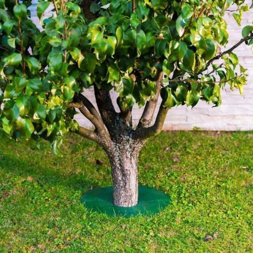 Tree Guard - Weed & Grass Control around Tree trunks Or Posts - Mix Pack (2xSmall 1xLarge) - Grass Edge