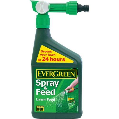 Evergreen Spray & Feed Lawn Food 1L
