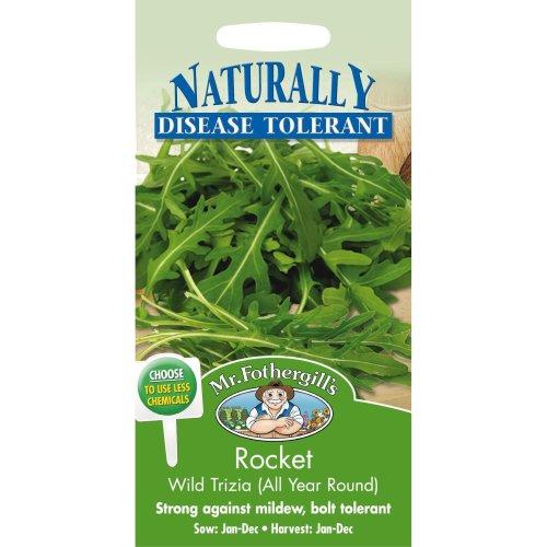 Mr Fothergills - Pictorial Packet - Herb - Rocket Wild Trizia - 350 Seeds