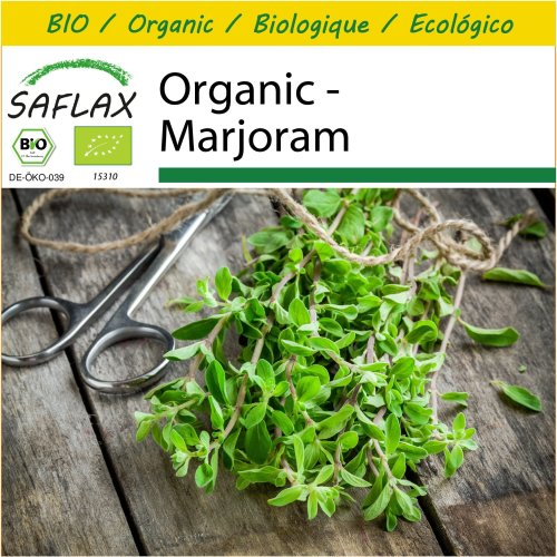 SAFLAX Potting Set - Organic - Marjoram - 700 certified organic seeds  - Origanum