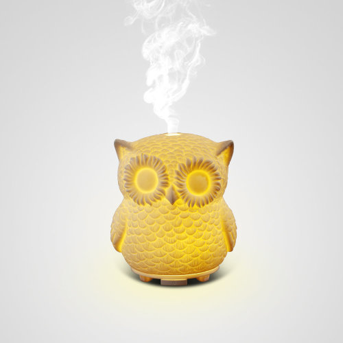 60ML Capacity Owl Modeling Essential Oil Diffuser Ultrasonic Aromatherapy Dry Burning Prevention LED Color Lamp For Bedroom As A Christmas Gift