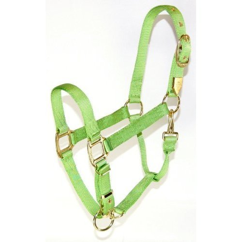 Hamilton 1-Inch Nylon Halter with Adjustable Chin, Lime Green - Average Size