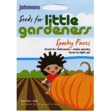 Johnsons Seeds - Pictorial Pack - Vegetable - Little Gardeners - Spooky Face Pumpkins - 10 Seeds